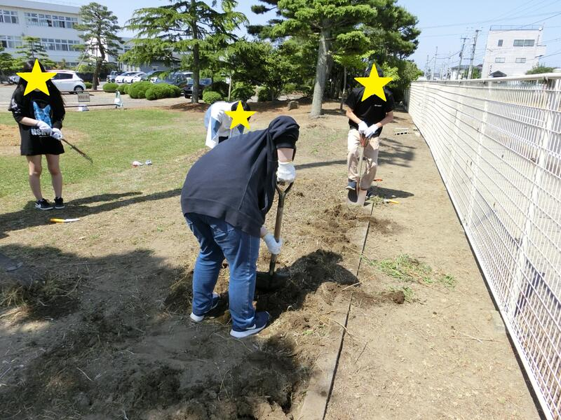 雑草の根を掘り起こし